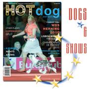 Собаки & Выставки group on My World